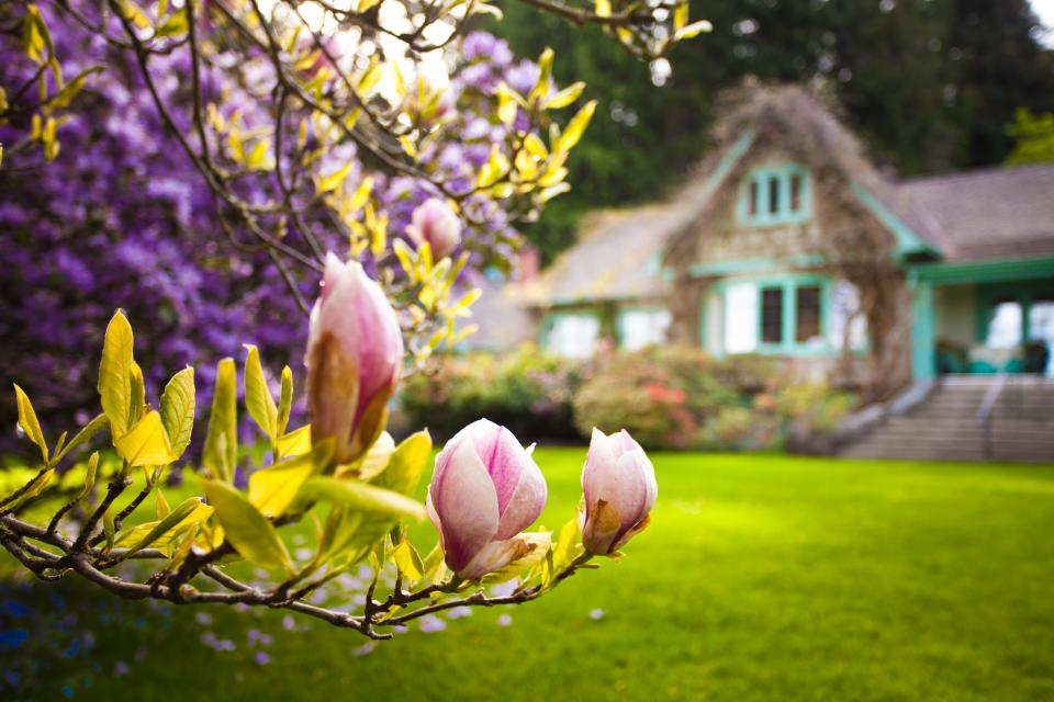 Milner Gardens and Forest